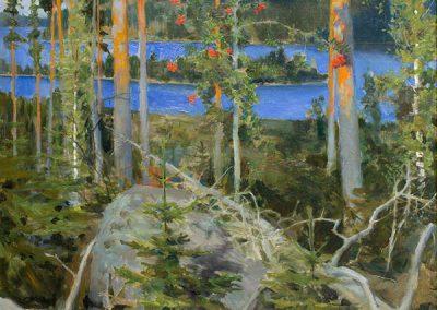 Erämaajärvi